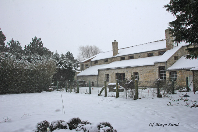 FPMaison-neige