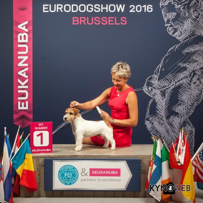 Gabin Meilleur Champion EDS Brusselles 2016